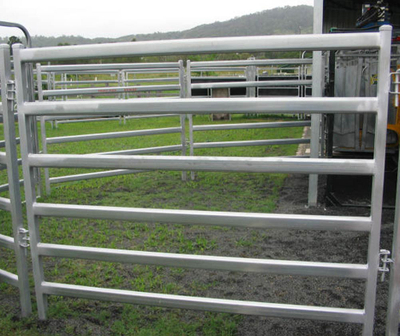 Hot dipped galvanized 6 rails Farm fence Cattle Panel